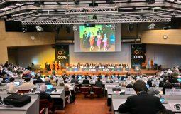 Những thảo luận về amiăng chrysotile tại Hội nghị Rotterdam lần thứ 5 tại Geneva