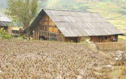 Công văn số 07 - Báo cáo và kiến nghị về vấn đề sử dụng amiăng trắng tại Việt Nam.